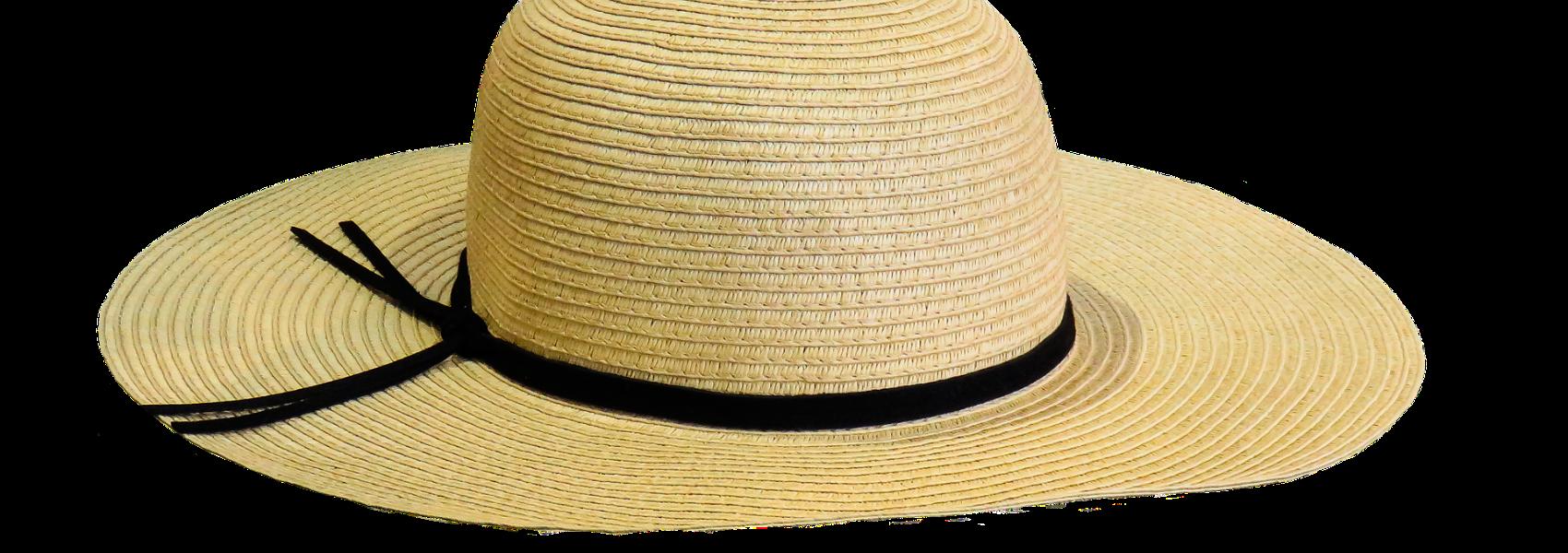 hat-1625676_1920 (1)